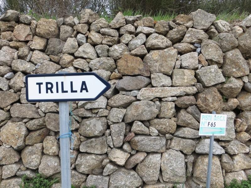 Trilla de Trevillach Img_2717