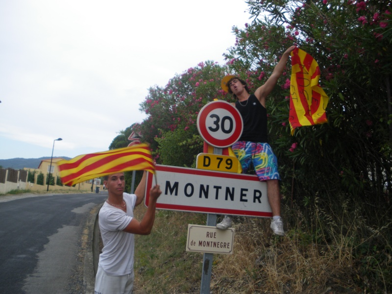 Montner Imgp0210