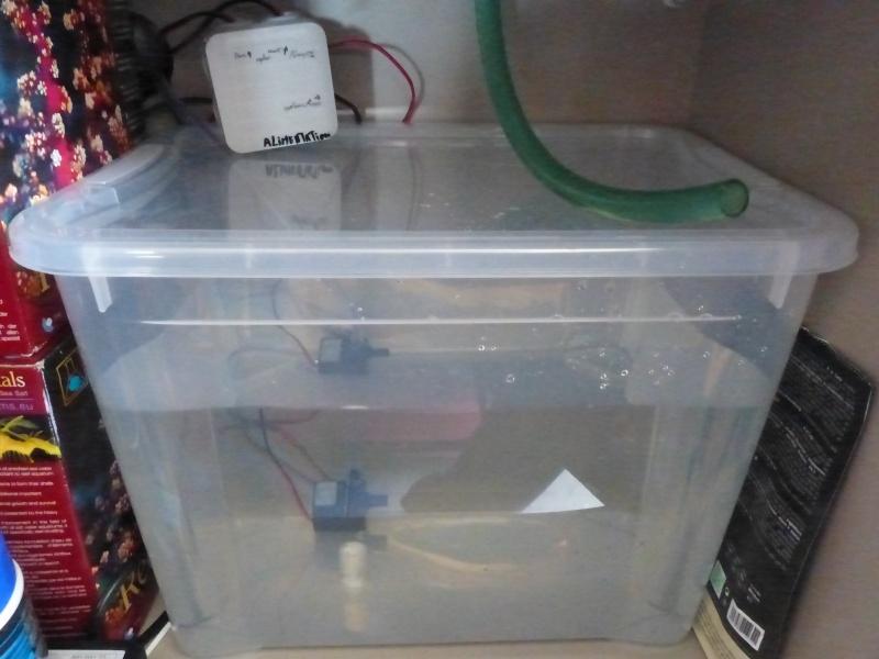 osmolateur DIY P1060113
