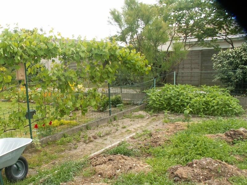 4 saisons au potager (l'almanach du jardinier) - Page 12 Pict0127