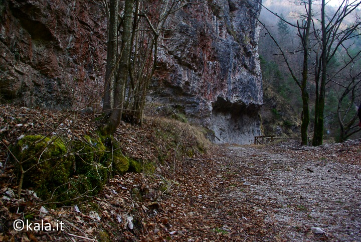 [FOTOreport] Val Tovanella bassa Vt_0310