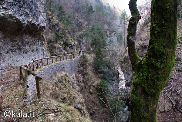 [FOTOreport] Val Tovanella bassa Vt_0410