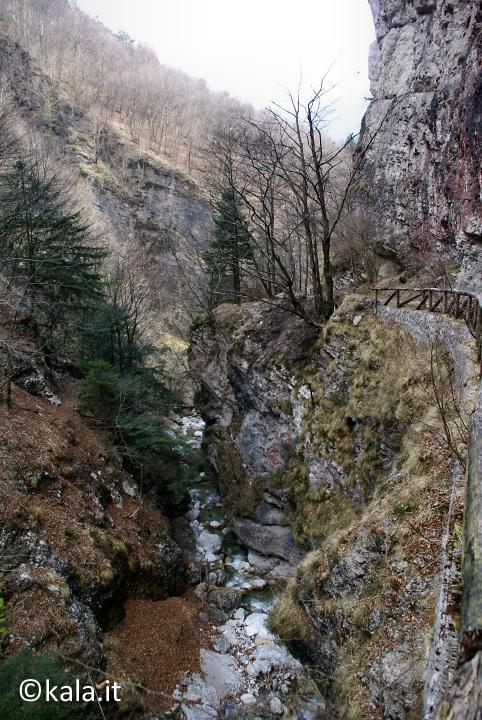 [FOTOreport] Val Tovanella bassa Vt_0510