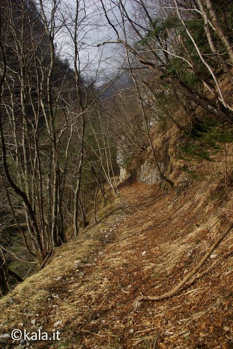 [FOTOreport] Val Tovanella bassa Vt_0911
