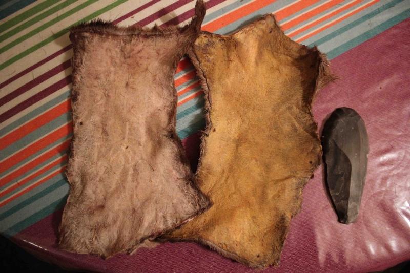 A propos du tannage des peaux - Page 3 Ca_mar10