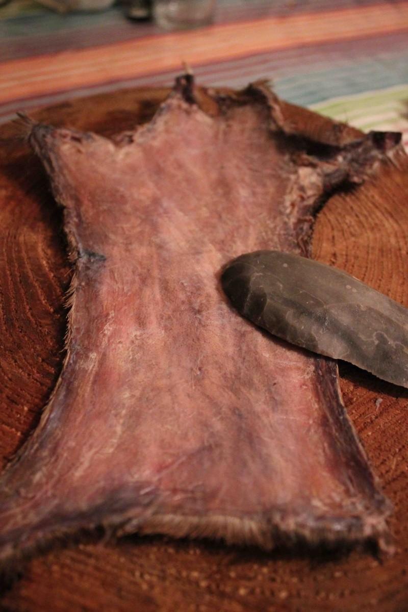 A propos du tannage des peaux - Page 3 Encore10