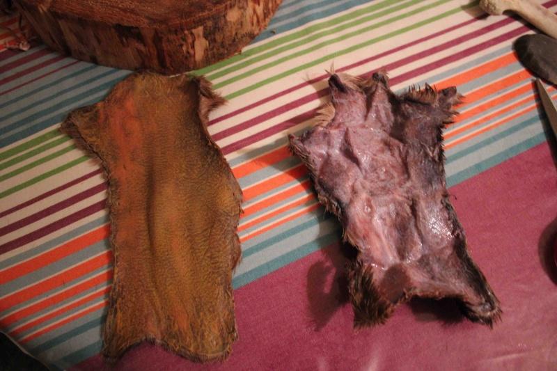 A propos du tannage des peaux - Page 3 Rincag10