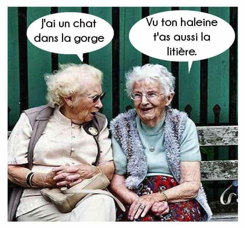 Humour en images ... tous thèmes ... - Page 8 31166310