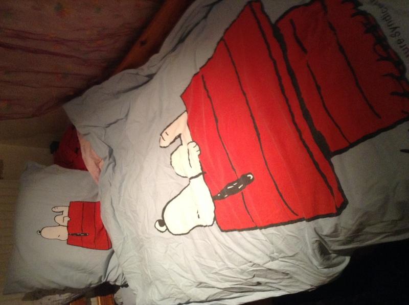 Snoo dort toutes les nuits avec moi Image10