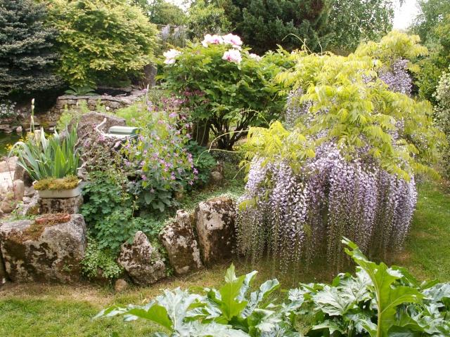 le joli mois de mai des fous jardiniers Pict0020