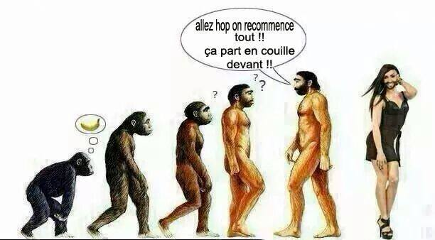 humour - Page 6 Cromag10