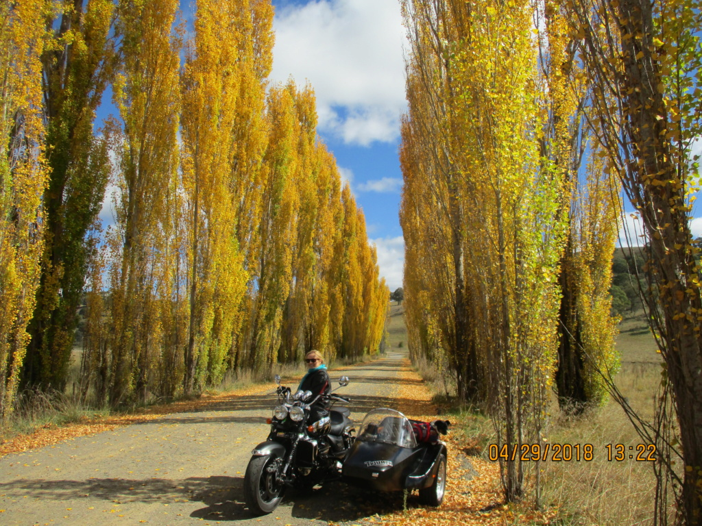 Northern Tablelands Ride 2018 Img_0910