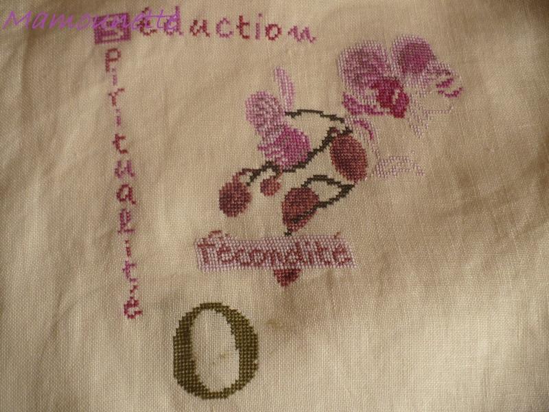 SAL Lilipoint Orchidée - FINI P1100715