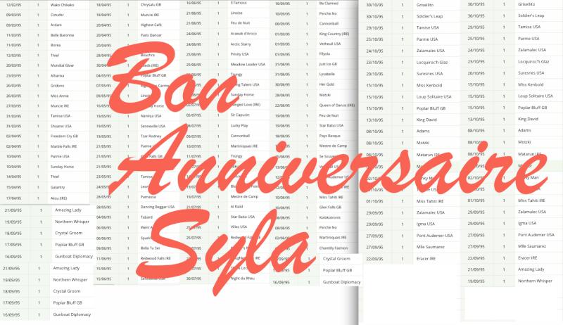 Joyeux Anniversaire Syla Captur16