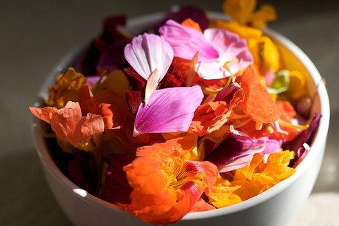 42 Fleurs que vous pouvez manger Fleurs10