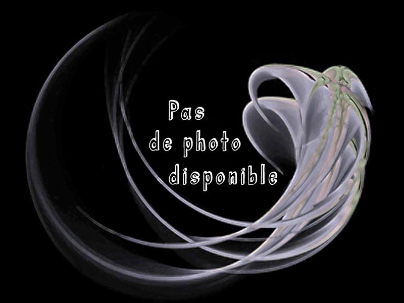pas_de10.jpg