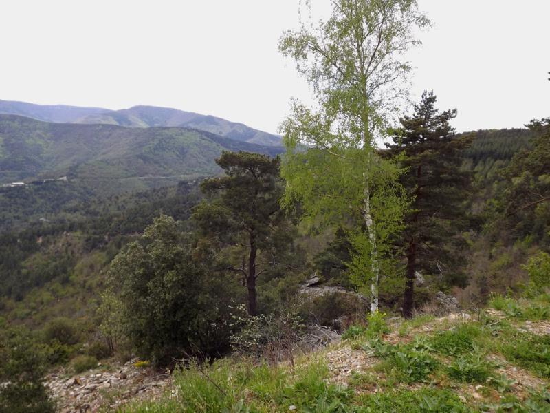 (07) Balade outre Massif Central - Ardèche Dscf6923