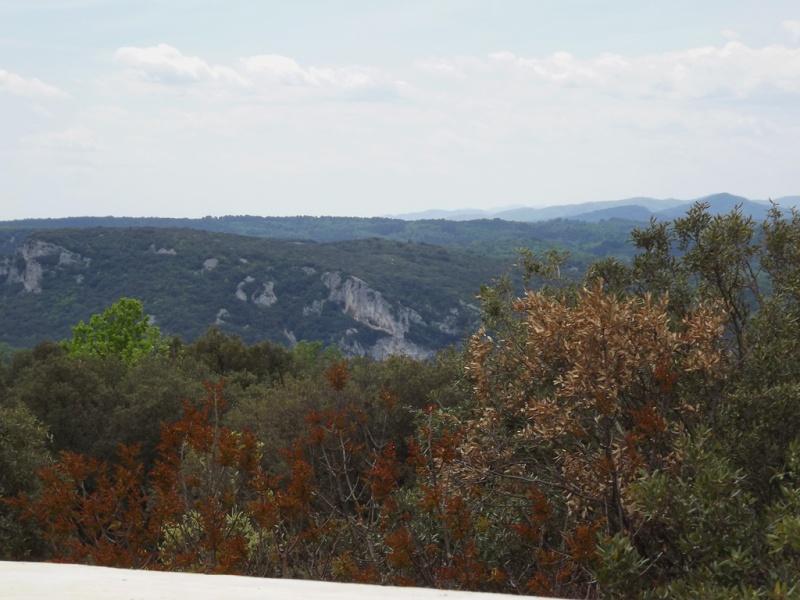 (07) Balade outre Massif Central - Ardèche Dscf6925