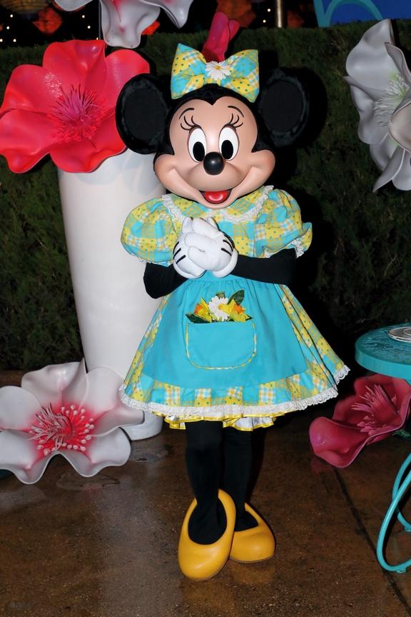 [Soirée PA] Disneyland Park Celebrations (12 décembre 2019) - Page 4 15762010