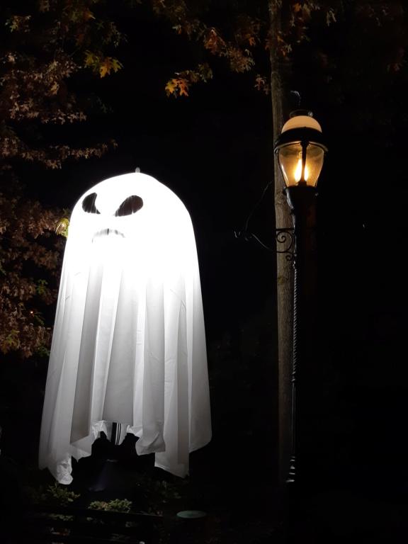 La soirée Halloween 2018 (mercredi 31 octobre) - Page 8 20181051