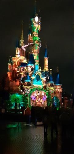 [Soirée PA] Disneyland Park Celebrations (12 décembre 2019) - Page 4 20191233