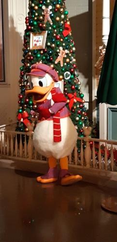 [Soirée PA] Disneyland Park Celebrations (12 décembre 2019) - Page 4 20191235