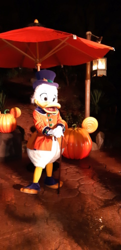 [Soirée PA] Disneyland Park Celebrations (12 décembre 2019) - Page 4 20191236