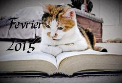 Carnet de lectures de Mitsou Fev1510