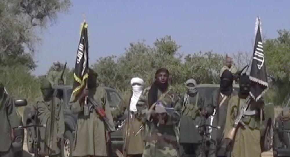 Tổ chức Boko Haram 10134510