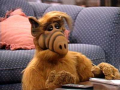 bestioles!! Alf13