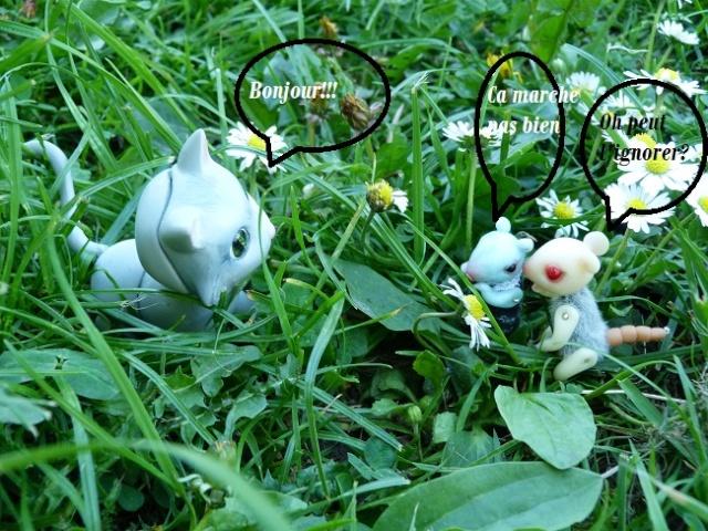 Chat de Kaori Photos24