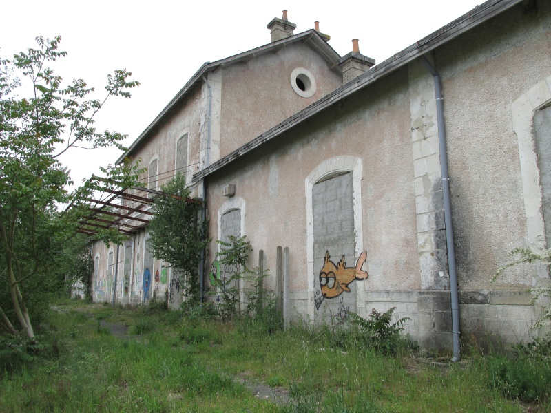 Sarthe Img_2110