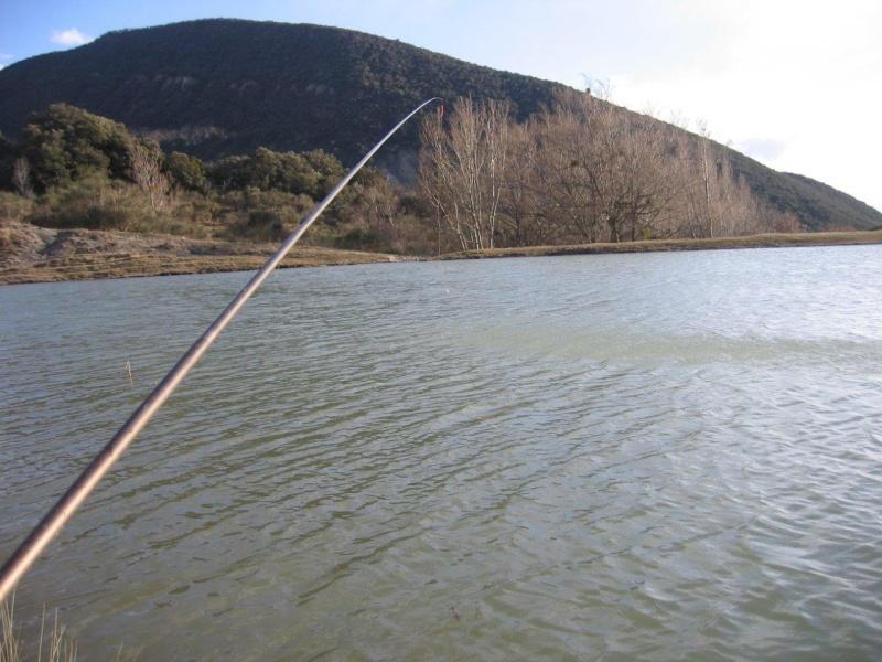 Lignes métalliques pour pêcher dans le vent Img_4910