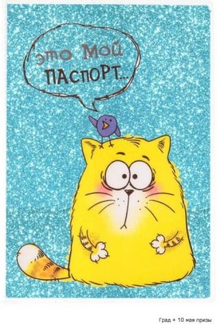 """Международная выставка кошек AFC """"Удивительные кошки"""", 10 мая 2015, Сургут (Россия) Yeazua17"""