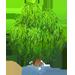 Vous cherchez un arbre ? Venez cliquer ici !!! Curlyw12