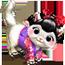 Divan à chat / Chat Champion / Chat Japonais Japane11