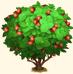 Vous cherchez un arbre ? Venez cliquer ici !!! Sans_397