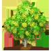Vous cherchez un arbre ? Venez cliquer ici !!! Sweetg12