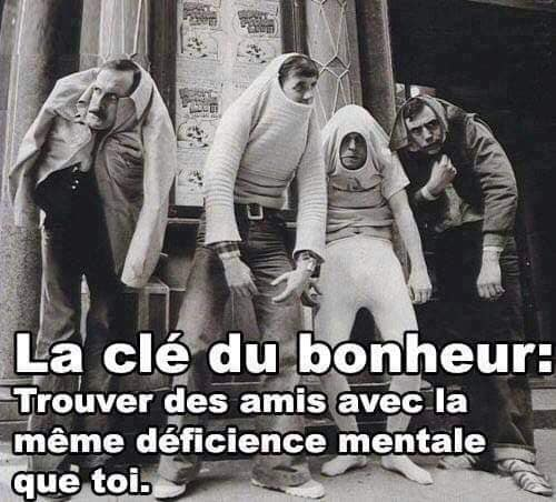 humour - Page 25 13376510