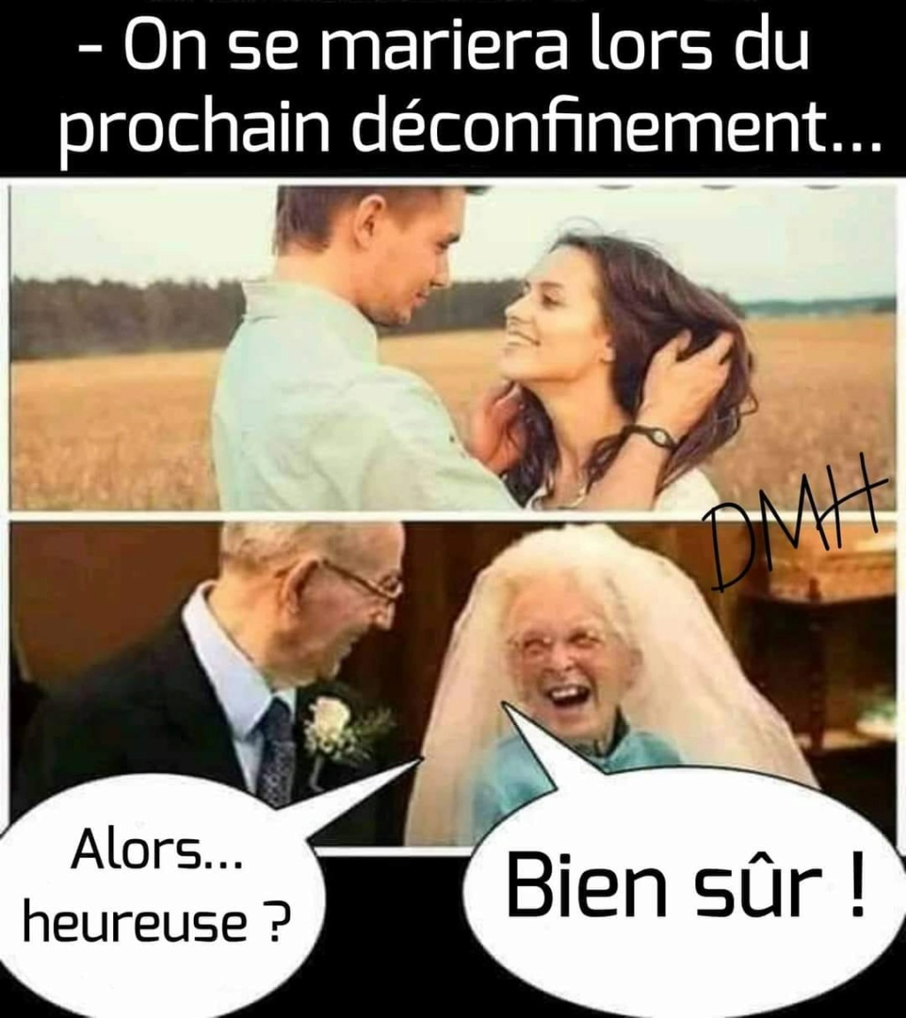 humour - Page 23 14073210