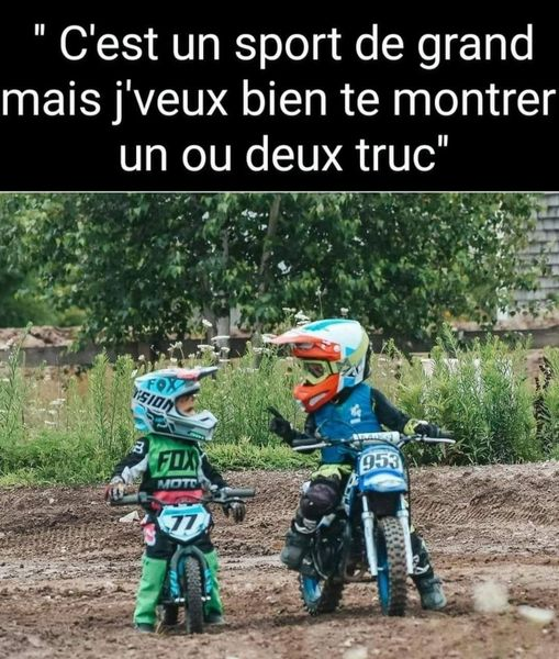 humour - Page 24 14361510