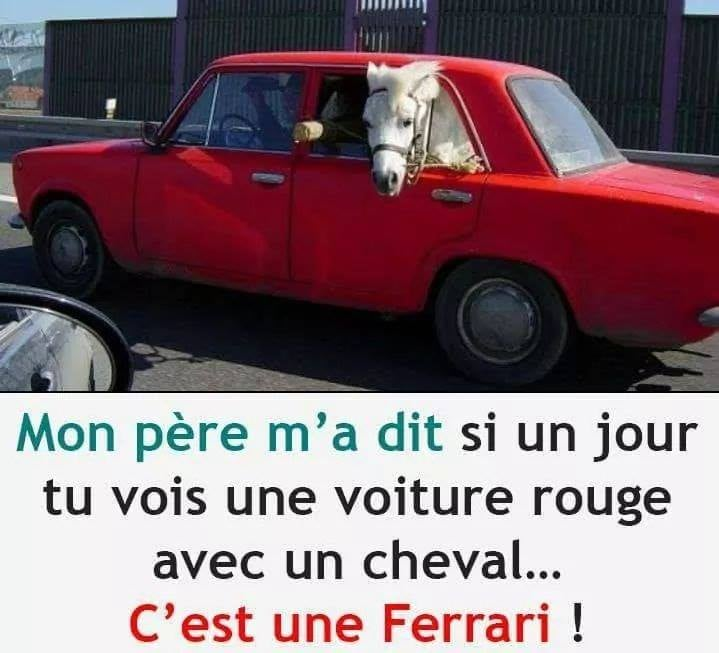 humour - Page 26 14882810