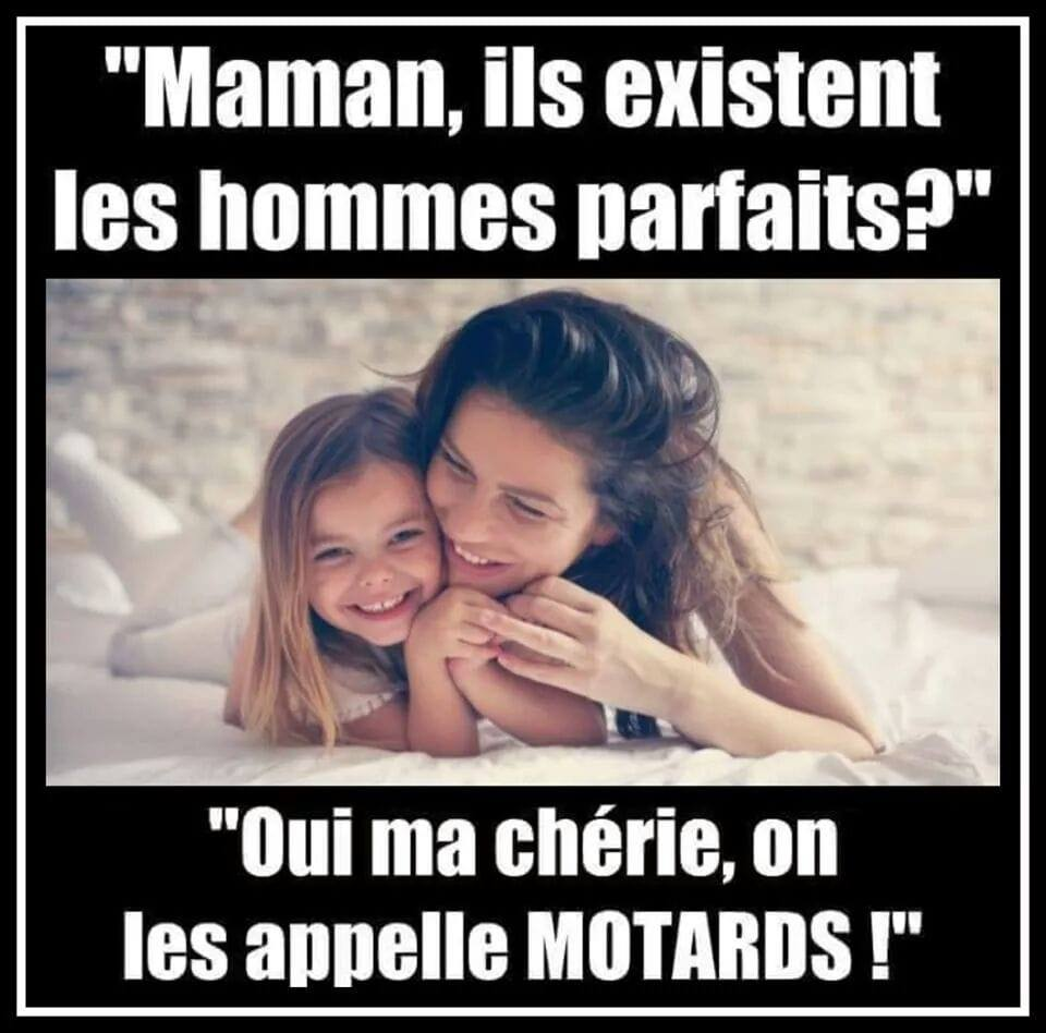 humour - Page 33 50474510