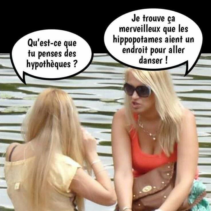 humour - Page 40 Bb10