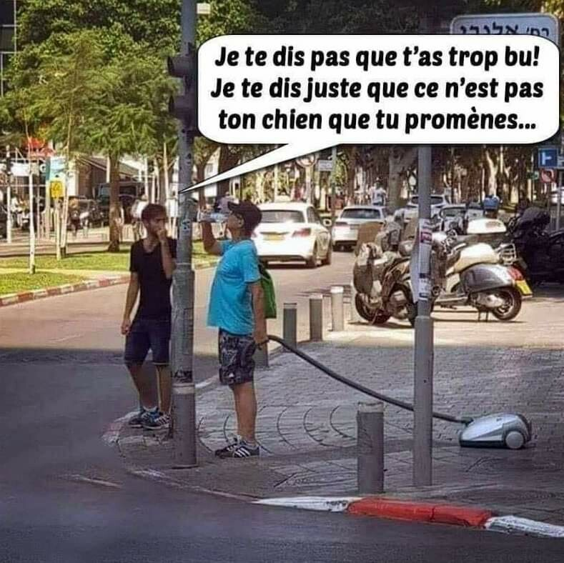 humour - Page 39 Bd298310