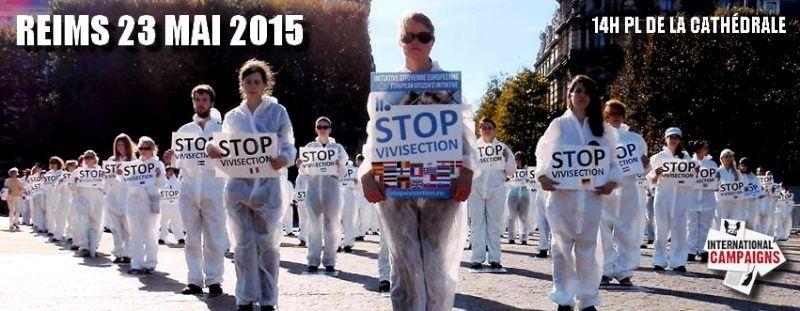 PETITION Contre la Vivisection Soutien ICE 11066110