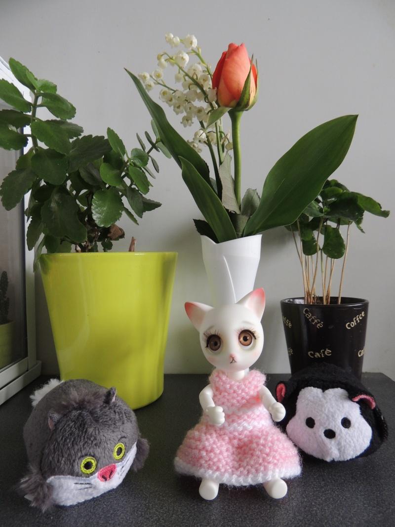 Rui de Doll family : nouvelles photos de Myla Dscn2713