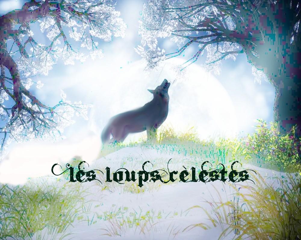 Les loups célestes