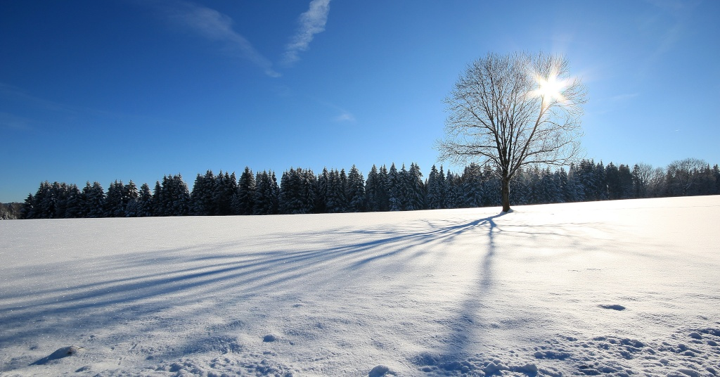 back en hiver Img_8010