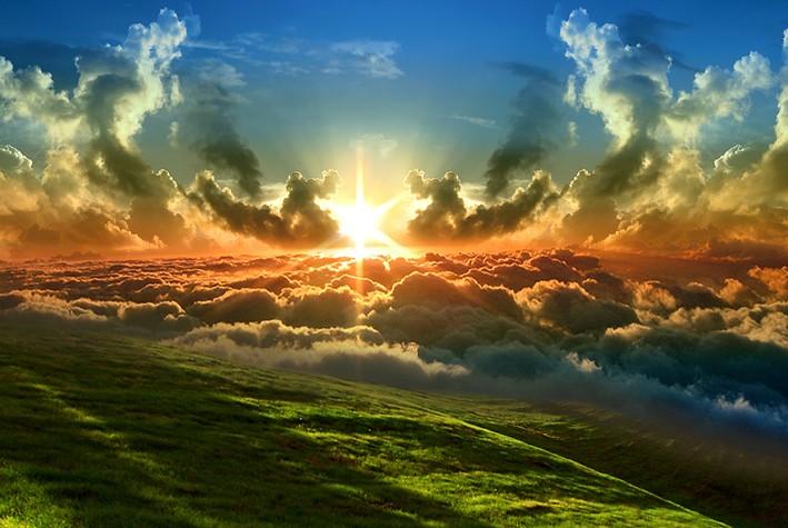 Le Royaume de Dieu est semblable à un grain de sénevé  Il-vou10